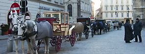 Horse Carriage at St. Stephen's Square